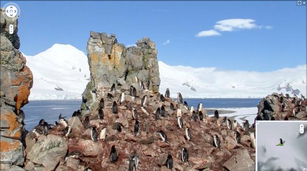 Antarctica On Streetview