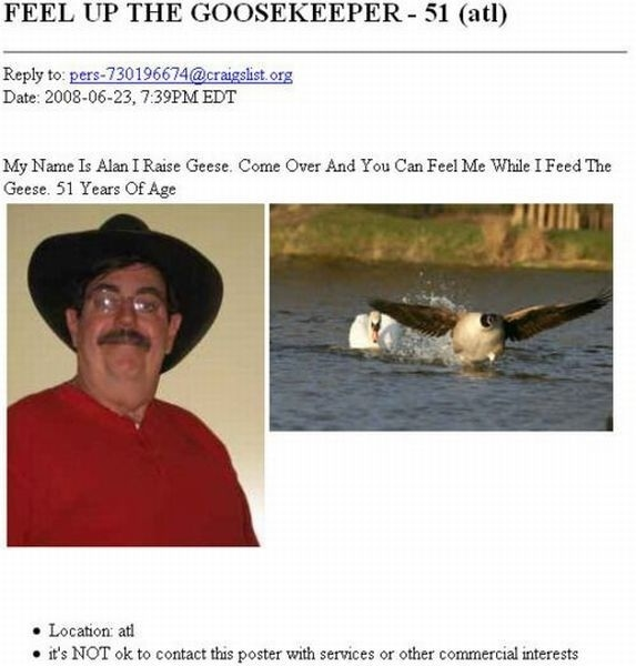 This Man REALLY Likes Geese