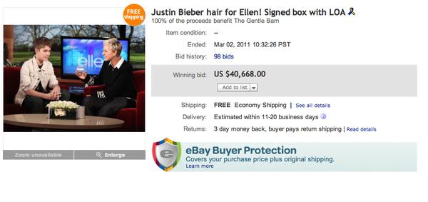 Bieber's Hair Sells For Over $40K On eBay