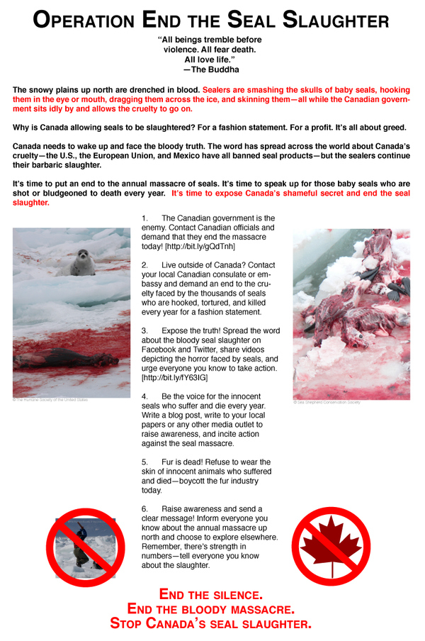 Operation Stop the Seal Slaughter