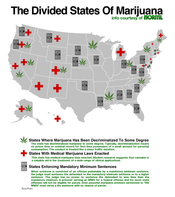 Map Of US Marijuana Laws PIC - Us map on weed laws