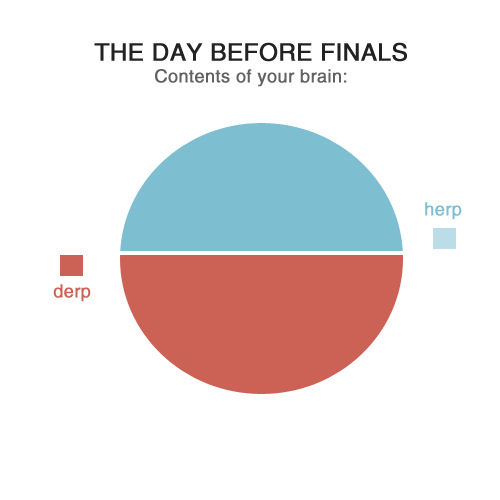 The Day Before Your Finals