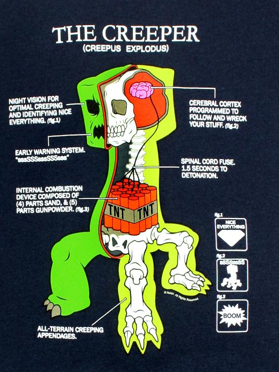 Anatomy of a creeper