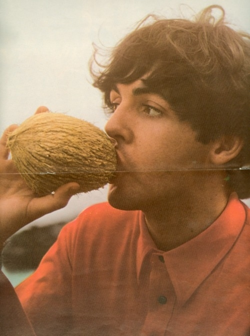 Paul McCartney Drinking From A Coconut