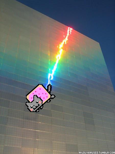 Nyan Cat Is In My Brain