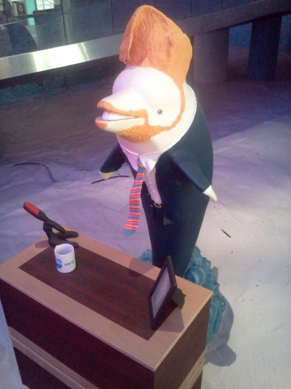Conan O'Dolphin