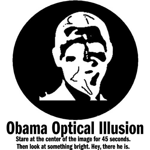 Amazing Obama Optical Illusion