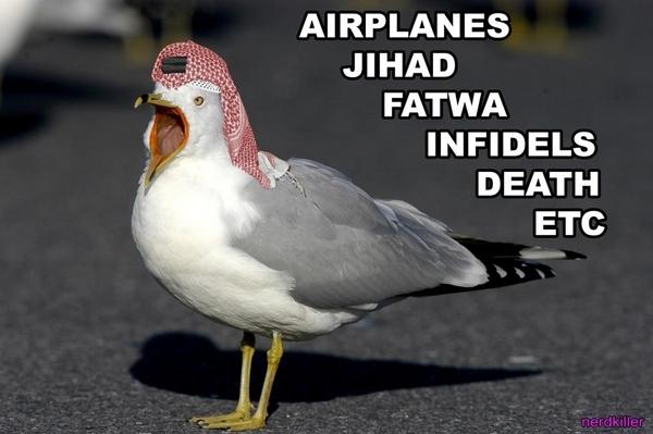 Radical Islamic Seagulls