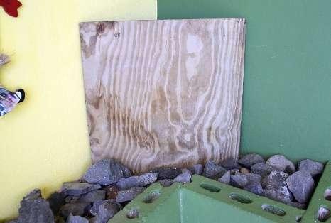 Jesus Sighting On Wood Panel!