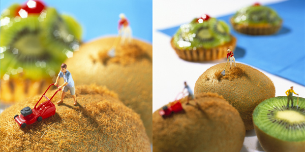 Mow Your Kiwi! And 9 Other Food Lanscapes in Miniature!