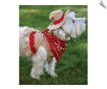 Cutesy Cowgirl Halloween Dog Costume