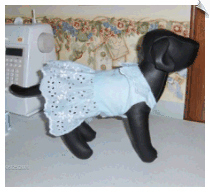 Blue Eyelet Dress for Dogs by Joanie