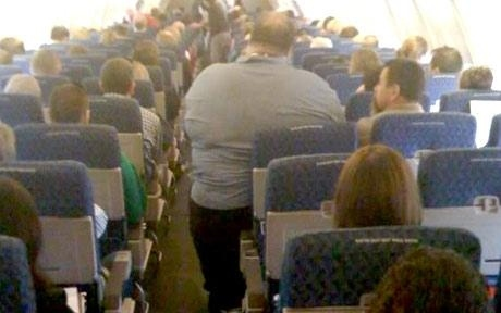 Flight Attendent's Obese Airline Passenger Picture