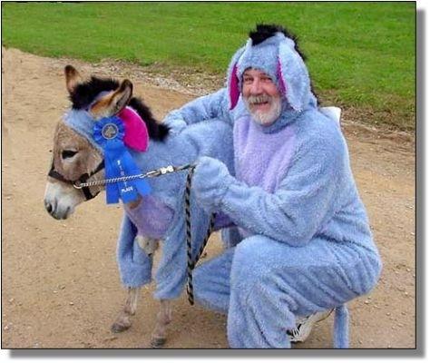 Love Me, Love My Donkey