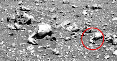 Snake On Mars?