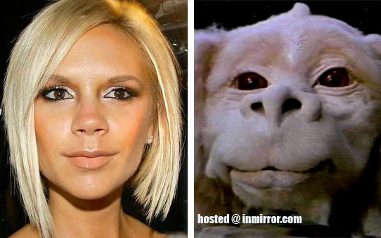 Who Knew Falcor Had a Twin?
