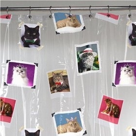 Fancy Cats Shower Curtain