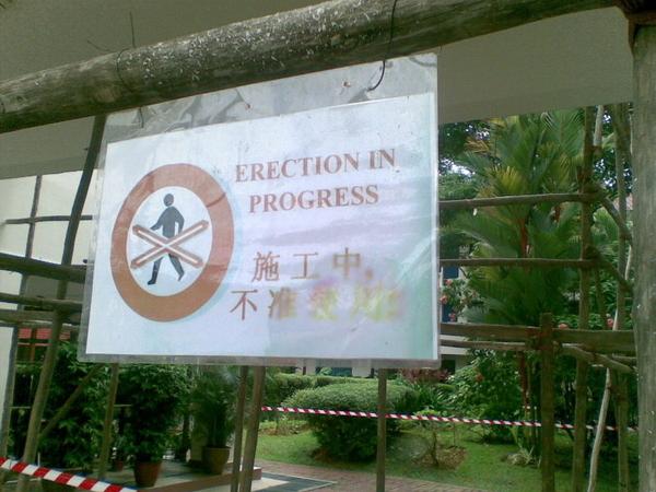 Erection In Progress