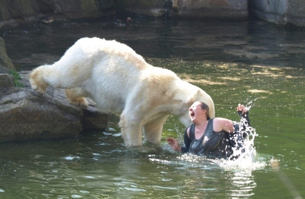 Woman Attacked By Polar Bear