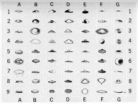 UFO Desktop Reference