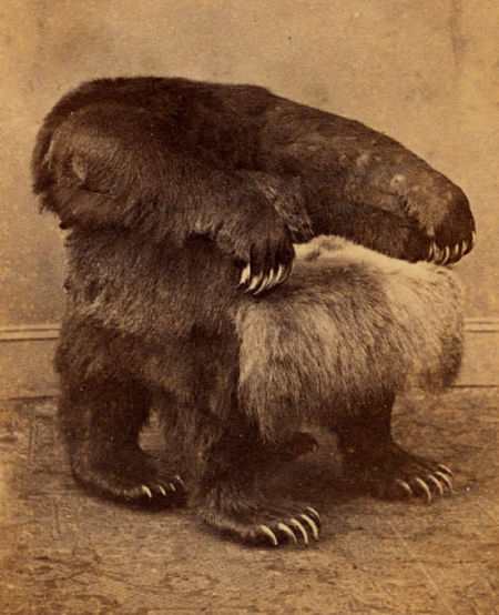 The Grizzly Chair