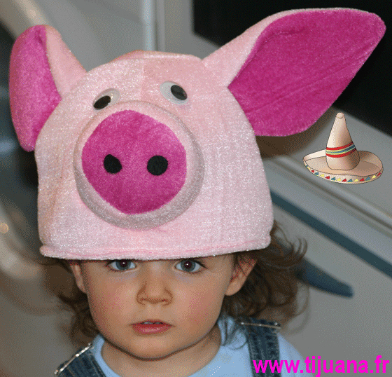 Swine Flu : Genetic Mutation