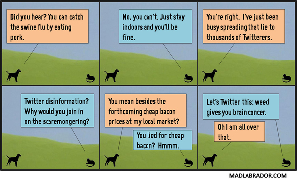 Comic Strip About Twitter & Swine Flu