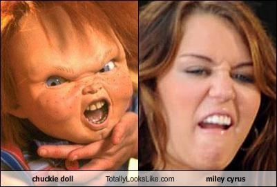 A True Comparison