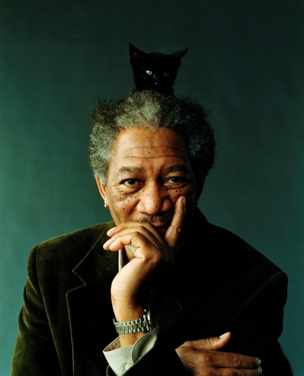 Morgan Freeman With Cat On His Head