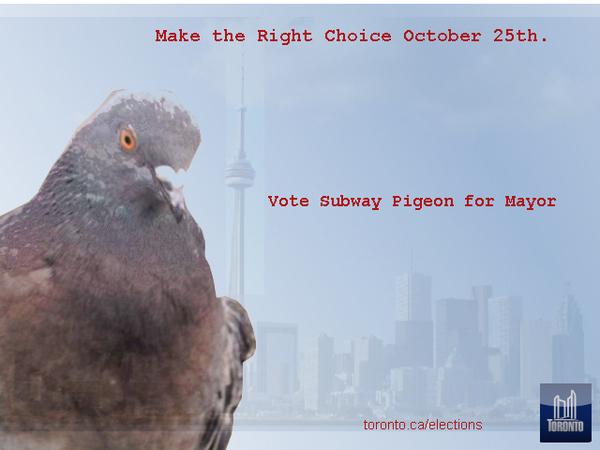 Subway Pigeon for Mayor!