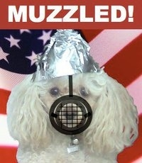 Bob The Wonderpoodle Has Been Muzzled