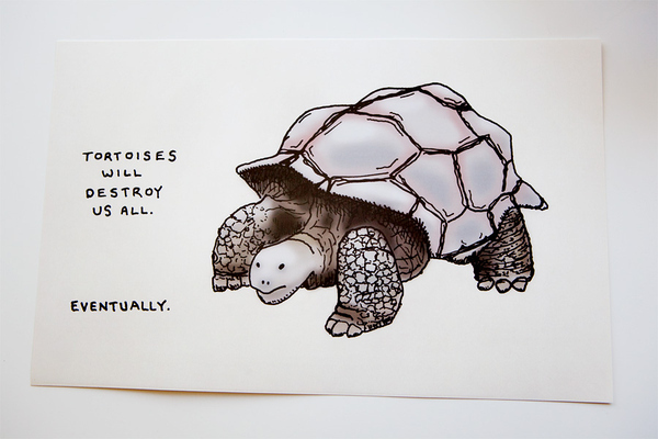 Tortoises Will Destroy Us All