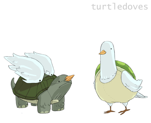Two Turtledoves