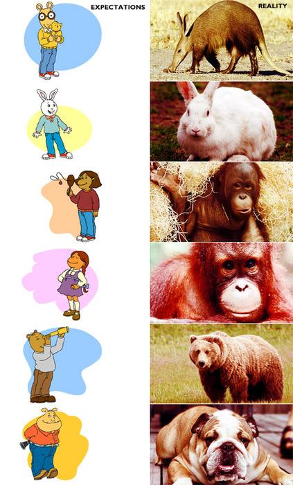 Arthur: Expectations V. Reality