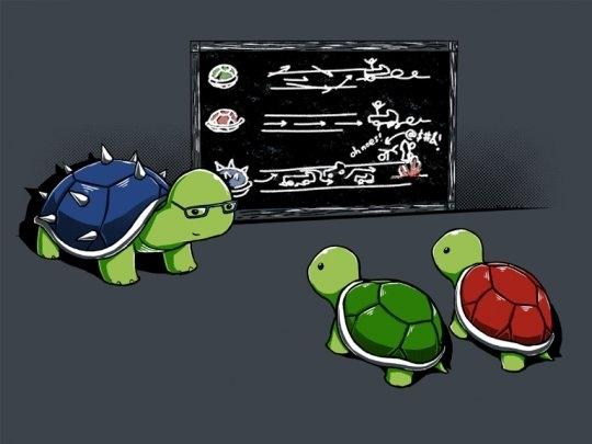 The Turtle School