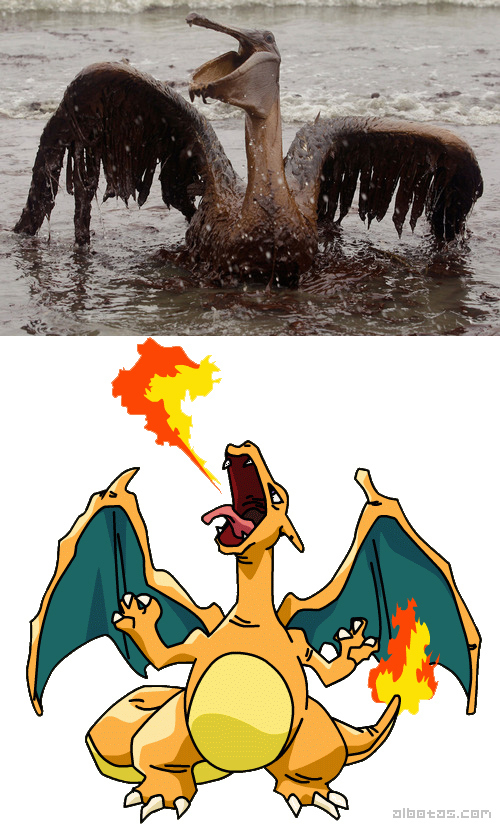 This Poor Pelican Covered in BP's Oil Totally Reminds Me Of...