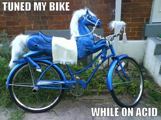 Dude...A Bike Is Totally A Horseless Horse