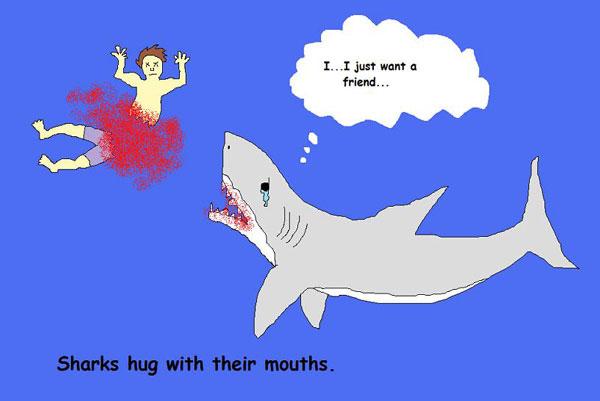 Sharks: Most Misunderstood Creatures On Earth