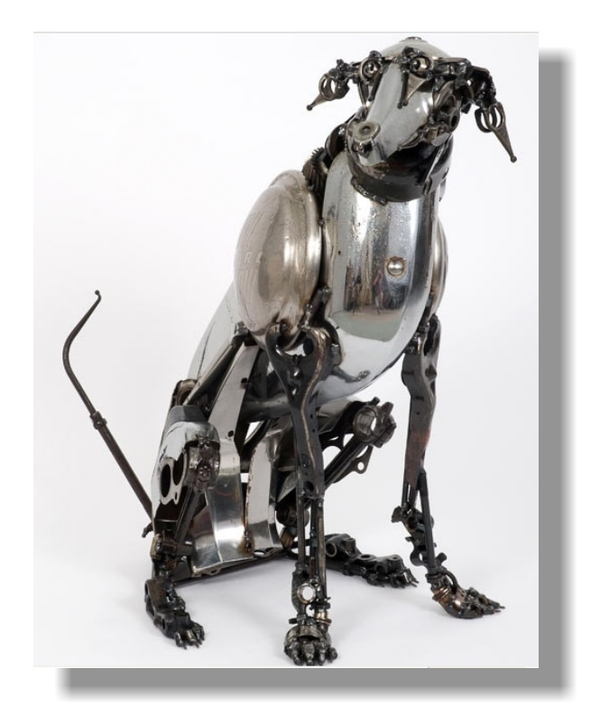 GREAT DOG for CITY DWELLERS and CAT LOVERS