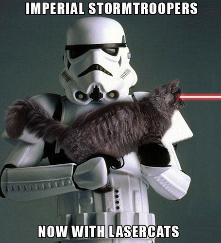 Real Stormtroopers Use Laser Cats