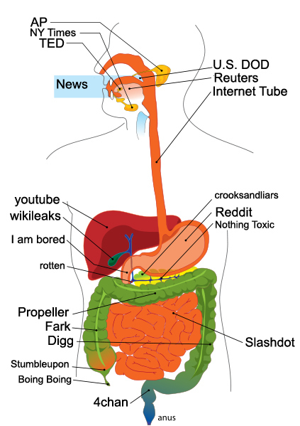 The Internet If It Was The Human Body