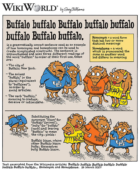 Buffalo Buffalo Buffalo...