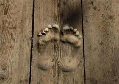 Footprints by Praying