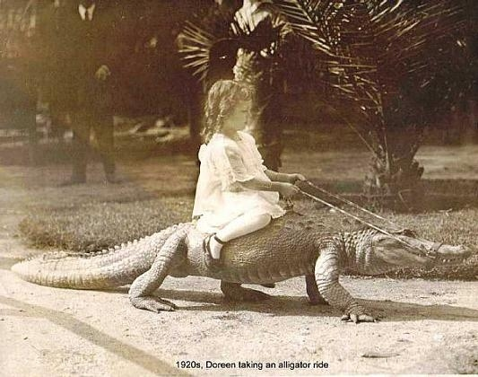 Girl Riding an Alligator