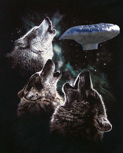 3 Wolf Balloon