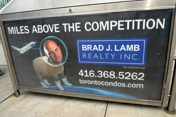 Yes...yes I would buy a house from this man/space sheep.