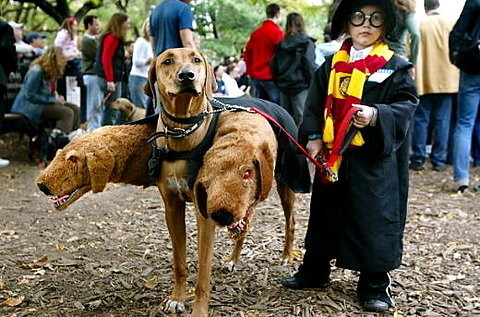 The Cutest Harry Potter Costume Ever