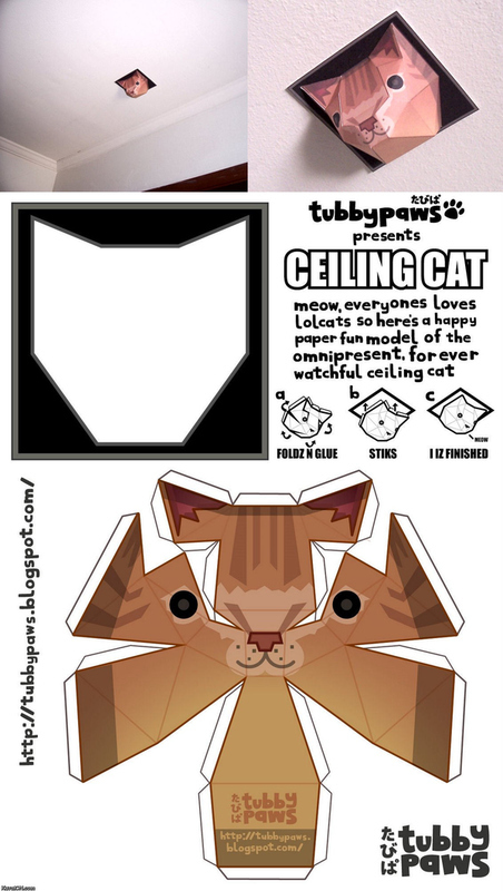 Make Our Very Own Ceiling Cat