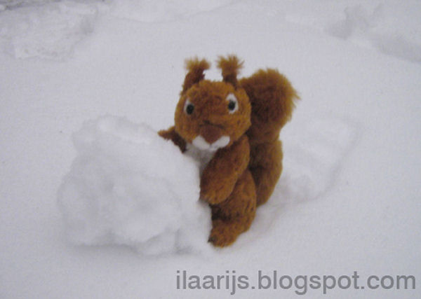 Squirrel is Making a Snowsquirrel