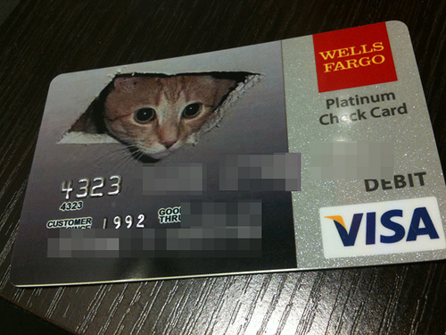 Check Card Ceiling Cat
